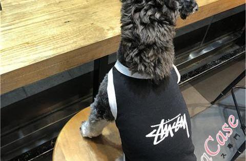 犬服 Stussy ドッグウェア ペット 洋服 ブランド Tシャツ おもしろ 春 夏 可愛い 綿製 中小型犬 おしゃれ 虫除け 日焼き防ぐ 散歩 ストリート系ブラントステューシー犬用洋服 シンプルなデザインで施されて 飽きのこないスタイルで 大人気です 耐久性