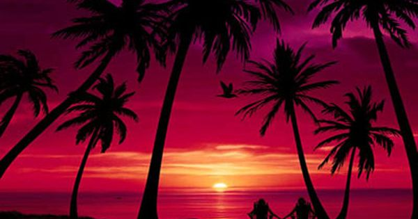 50 Beach Wallpapers For Free Wallpapers Com Sunset Wallpaper View Wallpaper Beach Scenes Beach free screensavers and wallpaper