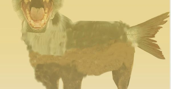 احباب الجزائر Ahbab Aljazair خروج دابة Exit Beast Moose Art Beast Animals