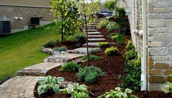 Tons of landscaping ideas - I like this curved pathway and plant