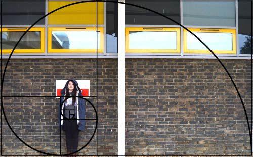 Proporción áurea En Fotografía Aurea Proporcion Aurea Espiral Aurea
