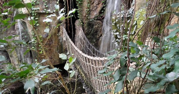 Lied Jungle At Henry Doorly Zoo Rope Bridge And
