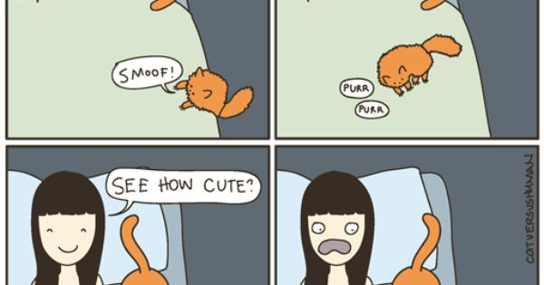 by Cat vs Human. My life every night, but with 3 dogs