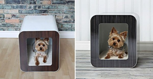 Comfortable Dog House Designs Indoor Dog House By Kooldog