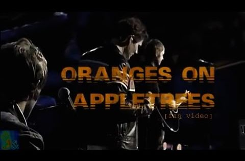 A Ha Oranges On Appletrees W Cc Lyrics Youtube With Images