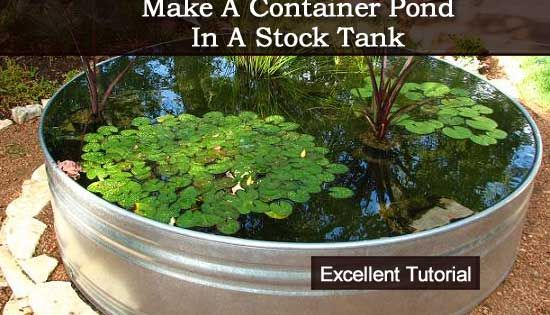 How To Make A Container Pond In A Stock Tank Stock Tank