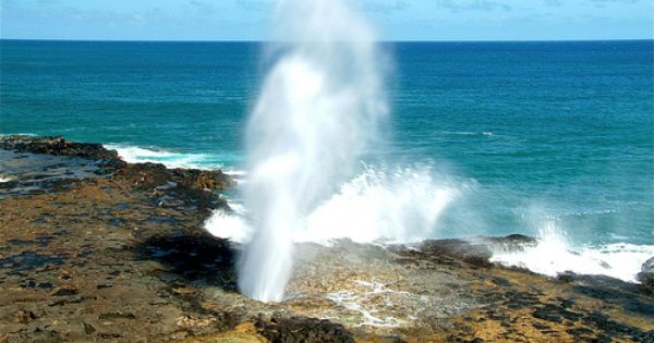 Spouting Horn Poipu Kauai Hawaii Hawaii Travel Hawaii