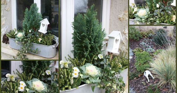 Jardini re d 39 hiver jardin en pots pinterest rennes for Jardiniere exterieur hiver