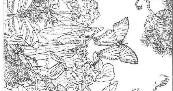 die 20 besten ideen für ausmalbilder erwachsene natur