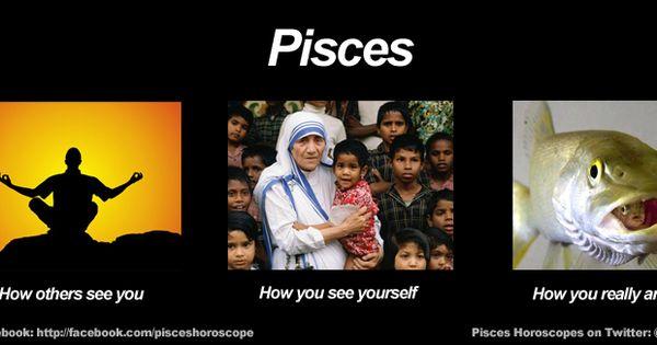 Funny Astrological Memes : Funny pisces meme zodiac memes pinterest