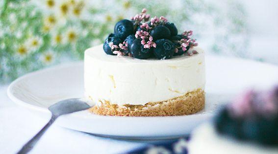 Recette cheesecake sans cuisson vanille et myrtille avec for Atelier cuisine sans cuisson