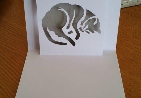 Une tr s belle carte d 39 un petit chat endormi qui ravira - Un chat gratuit ...
