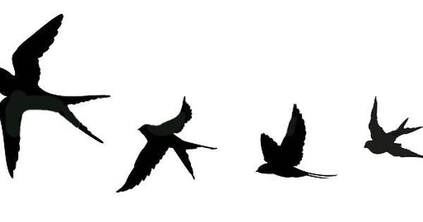 Golondrinas Tatuajes De Plumas De Aves Tatuajes De Aves