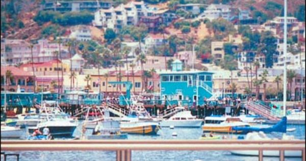 Catalina Island So Excited To Go There Next Friday Looks Like The Italian Riveria Travel Catalina Island Travel Catalina