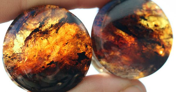 Chiapas Amber Plugs by Onetribe This site has all the plugs from