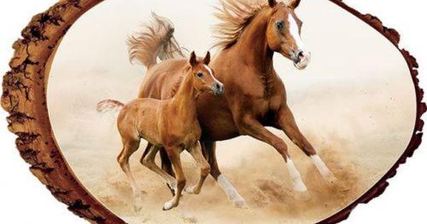 Wind Runners Horses Rustic Wooden Plaque Horses Beautiful Horses White Arabian Horse