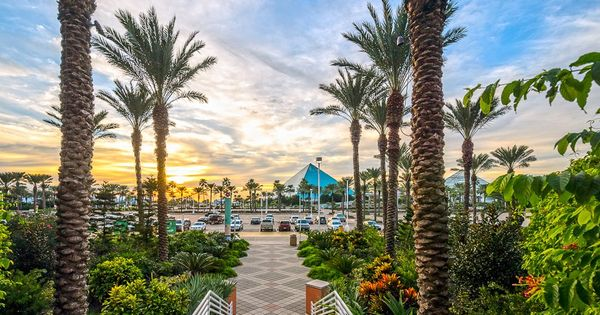 Moody gardens is one of the most beloved attractions in - Moody gardens hotel galveston texas ...