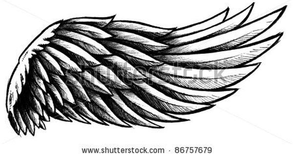 X Wing Line Drawing : Wing line drawing google search tattoo ailes