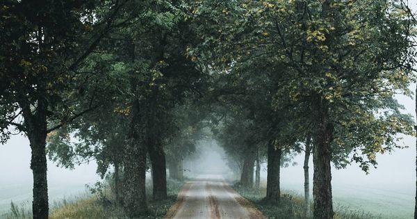 Delta Breezes Kassem Hijazi Kassemhijazi Nature Photography Scenery Beautiful Landscapes