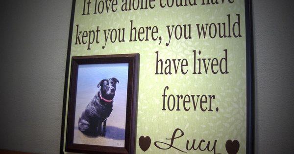 memorial day dog names