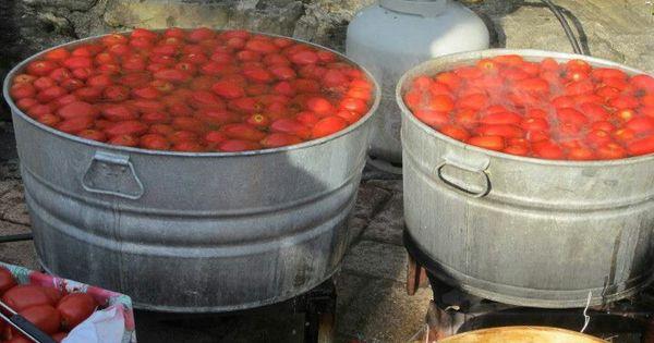 Tomato Jarring 2 | project agvania | Pinterest | Tomatoes