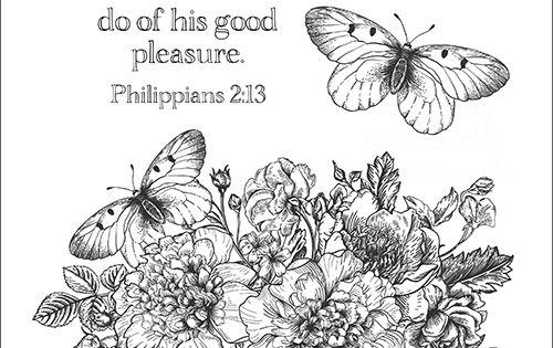 Bible Study Philippians Week