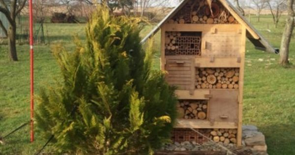 fabriquer un nichoir insectes pour favoriser la. Black Bedroom Furniture Sets. Home Design Ideas