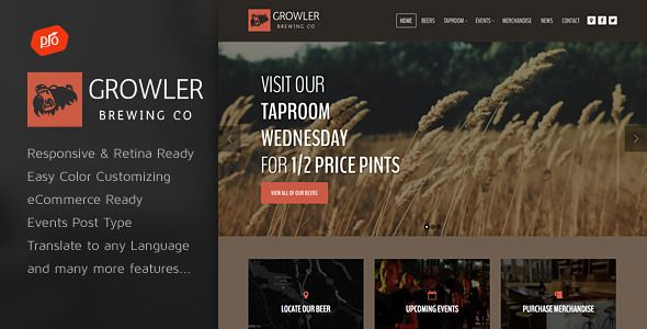 Brown Responsive Wordpress Theme For Ebook Nulled