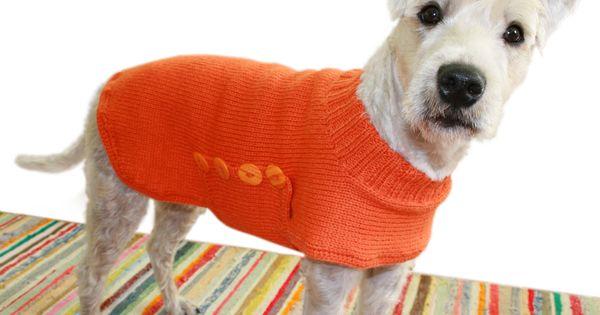 Hali Koirantakki Koiran Vaatteita Neuleet