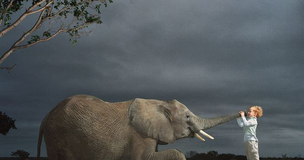 Elephant and a kid by Tim Flach hairstylist❤️Studió Parrucchieri Lory (Join us
