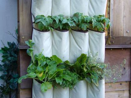Hanging herb garden idea