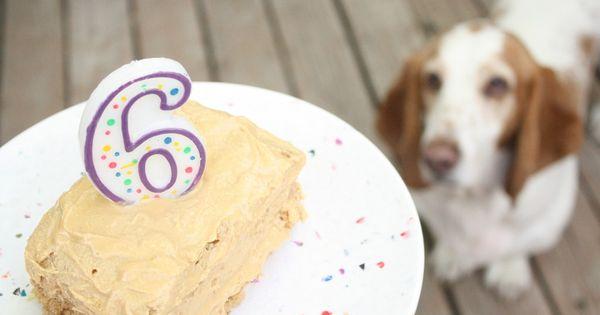 Dog Friendly Peanut Butter Banana Birthday Cake For Lola S