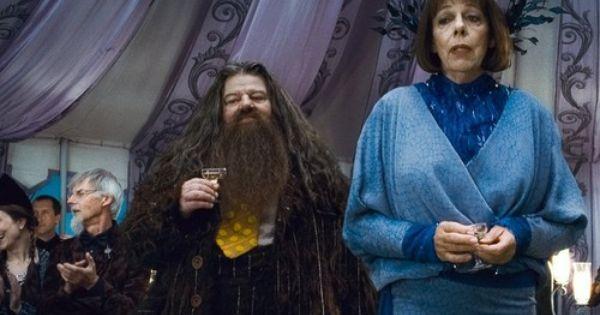 Hogwarts Professors Wallpaper Hogwarts Professors Wallpaper Hogwarts Professors Weasley Harry Potter Harry Potter Facts