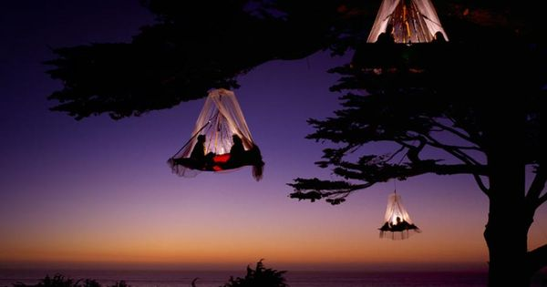 Tree Camping on the Pacific Coast, Elk, California. omg i want to