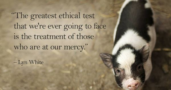 """""""The greatest ethical test that we're ever going to face is the"""