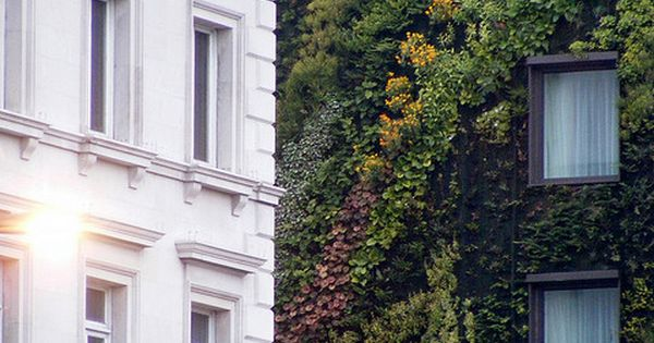 Living walls, Green walls or vertical gardens is a concept that dates