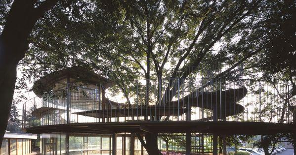 Kinder Garden: 30 Tree Perch And Lookout Deck Ideas Adding Fun DIY