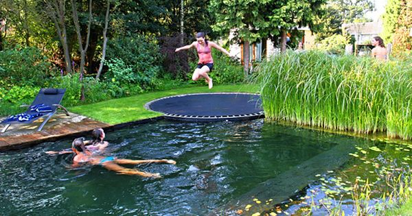 A natural swimming pool, disguised as a pond, with a trampoline instead