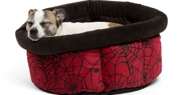 Dogs Also Need To Sleep Every Day Like People You Yourself Will Sleep In The Soft Bed And Think Your Dog Will Sl Dog Sofa Bed Orthopedic Dog Bed Cool Dog