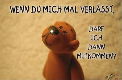 Shirtworld Tatzino Tatzino Postkarten Tatzino Gluckwunschkarten Tatzino Geburtstagskart Tiefsinnige Spruche Nachdenkliche Spruche Lebensweisheiten Spruche