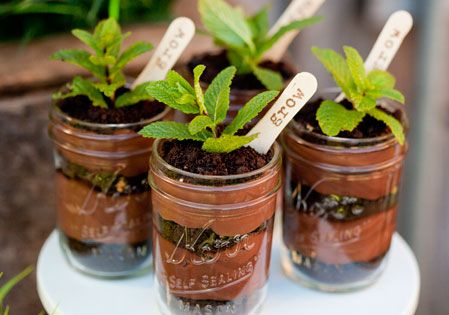 "potted ""plant"" parfaits"