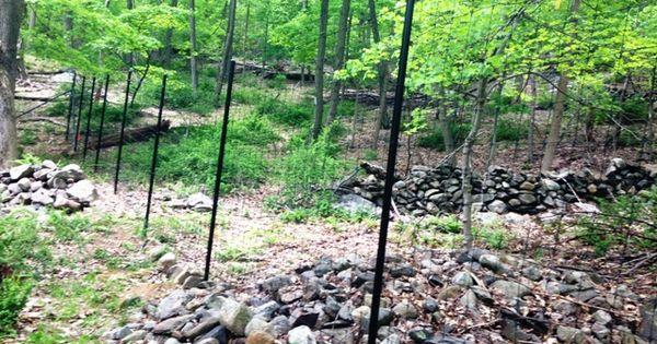 Deer fencing deer fence pinterest deer fence for Fishing line deer fence