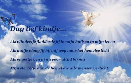Rumi Citaten Nederlands : Gedicht voor overleden kind gedichtjes pinterest
