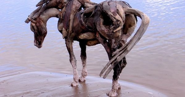 Driftwood Art of Heather Jansch - Driftwood horse contemplating in the pond.