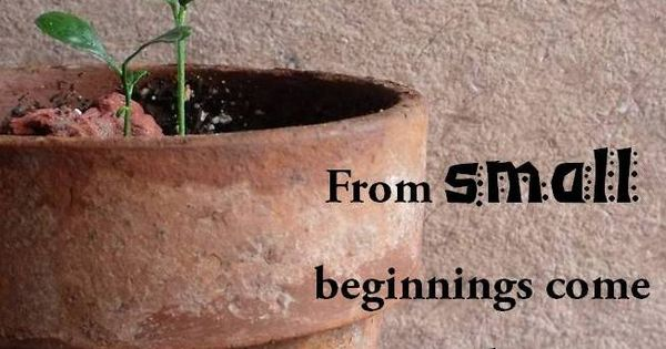 from small beginnings - photo #13