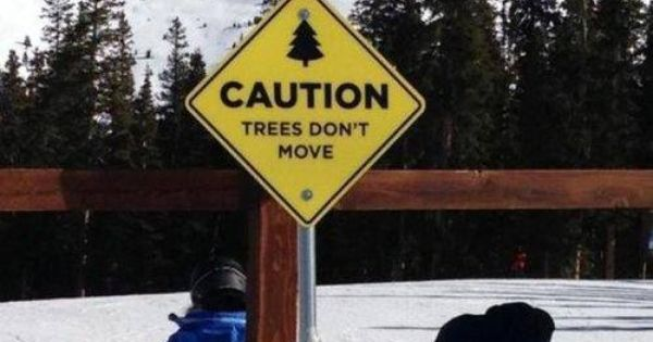 Sign at Ski Resort: CAUTION ~ Trees Don't Move