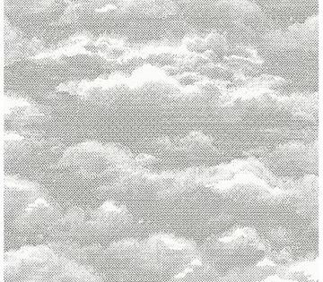 Bauhaus Weathered Wood Peel And Stick Wallpaper Cloud Wallpaper A Street Prints Clouds