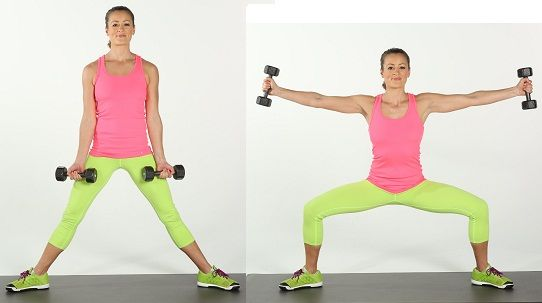 Image result for Sumo Squat With Side-Arm Raises