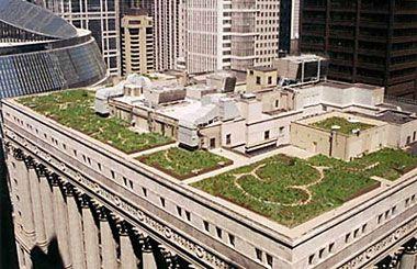 Detailed Instructions Green Roof Rooftop Garden Urban Heat Island