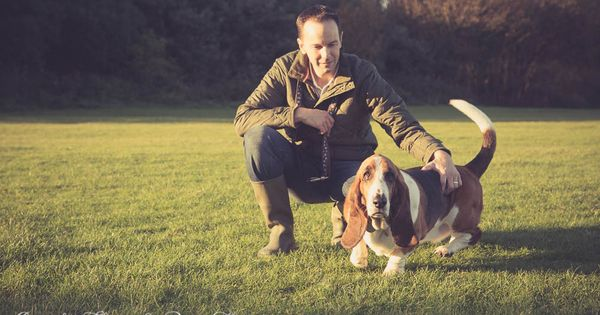 Basset Hound Photoshoot In Worthing West Sussex By Candy Floss